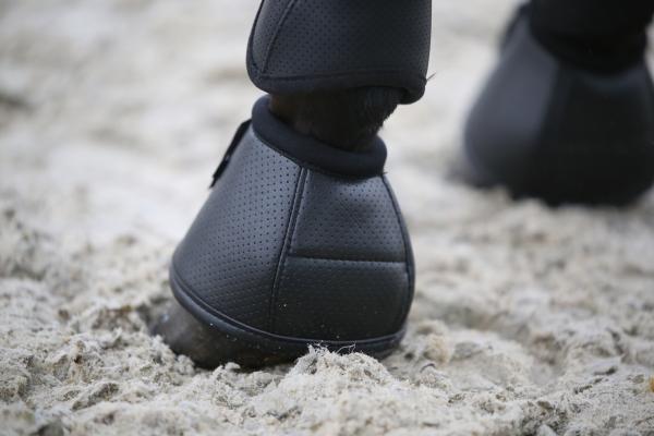 Horse Guard Gummiglocke - schwarz - XL