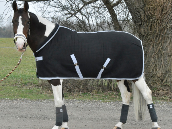 Mink Horse Wolle/Thermo Stall- / Abschwitzdecke