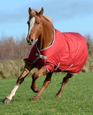 Bucas FREEDOM Turnout light - Chilli red