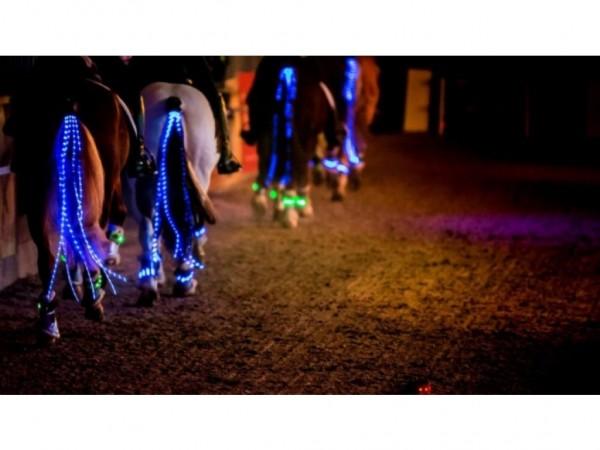 LED-Schweifbeleuchtung LONG BACK - Diverse Farben