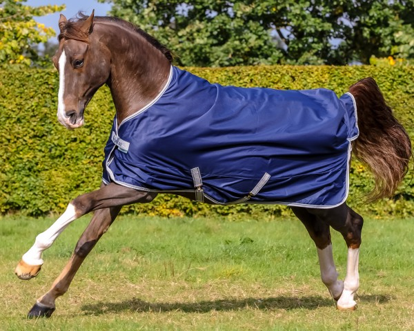 Bucas FREEDOM Turnout 150 gramm - outer space - Grösse 155 cm